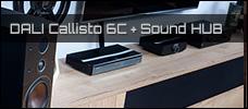 Test: DALI Callisto 6C + Sound Hub (BluOS)